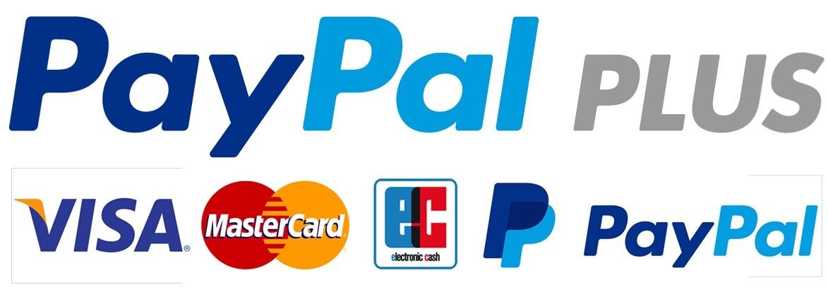 Payment mit PayPalPlus